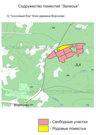 Карта поселения.  Свободные земельные участки для поместья.